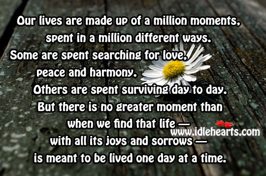 Our lives are made up of a million moments Image