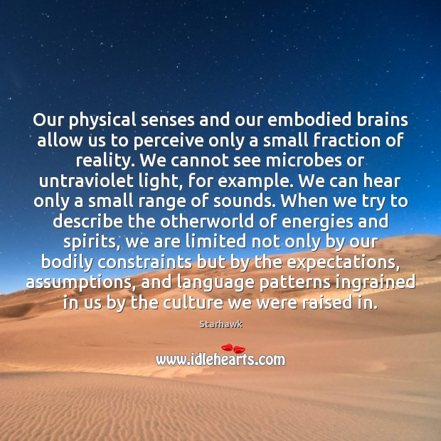Image, Our physical senses and our embodied brains allow us to perceive only