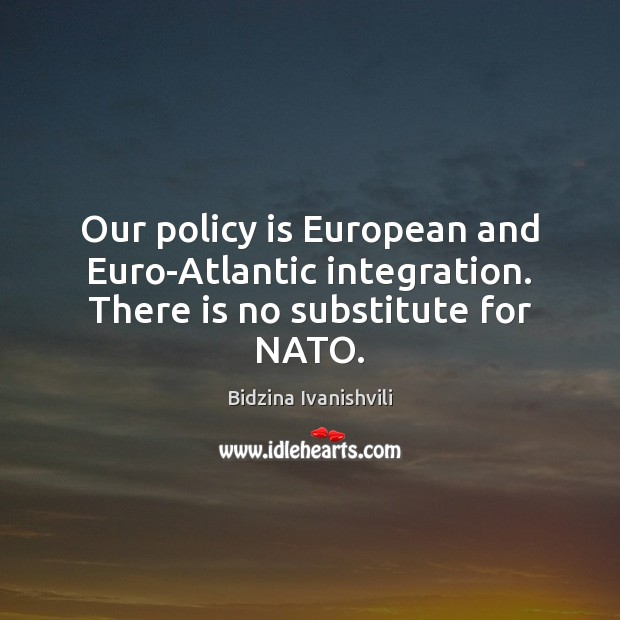 Image, Our policy is European and Euro-Atlantic integration. There is no substitute for NATO.