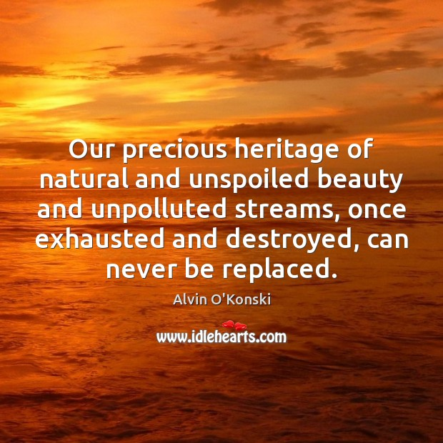 Image, Our precious heritage of natural and unspoiled beauty and unpolluted streams, once