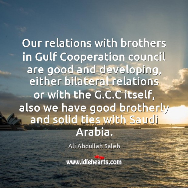 Image, Our relations with brothers in Gulf Cooperation council are good and developing,