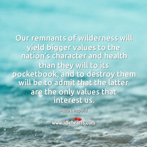 Image, Our remnants of wilderness will yield bigger values to the nation's character