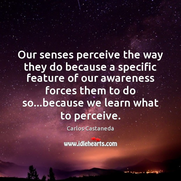 Our senses perceive the way they do because a specific feature of Image