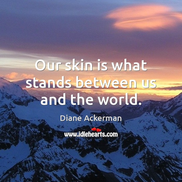 Our skin is what stands between us and the world. Diane Ackerman Picture Quote