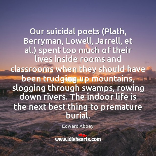 Image, Our suicidal poets (Plath, Berryman, Lowell, Jarrell, et al.) spent too much