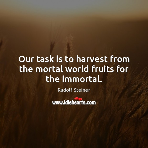 Our task is to harvest from the mortal world fruits for the immortal. Rudolf Steiner Picture Quote