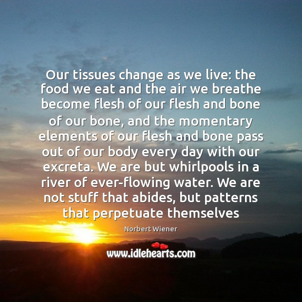 Our tissues change as we live: the food we eat and the Image