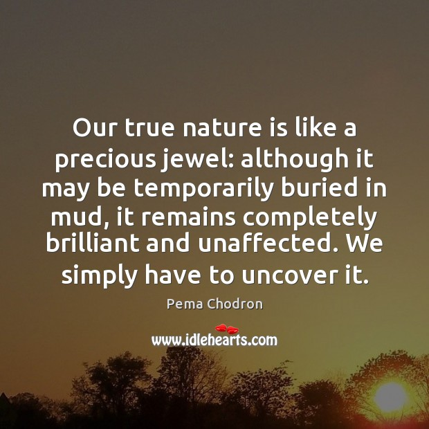 Image, Our true nature is like a precious jewel: although it may be