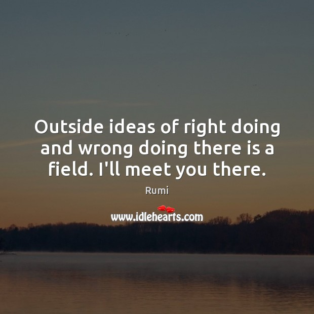 Image, Outside ideas of right doing and wrong doing there is a field. I'll meet you there.