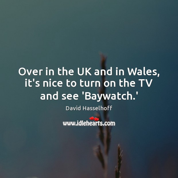 Image, Over in the UK and in Wales, it's nice to turn on the TV and see 'Baywatch.'