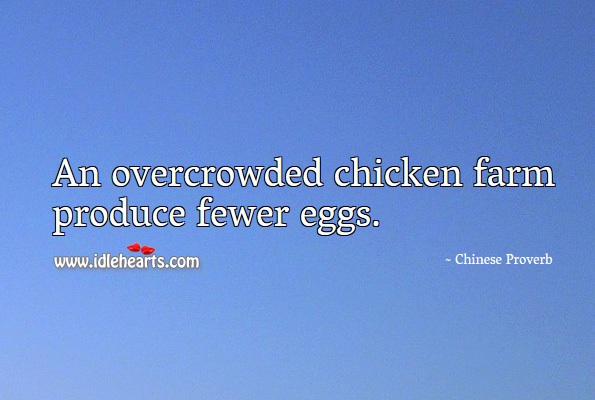 An overcrowded chicken farm produce fewer eggs. Chinese Proverbs Image