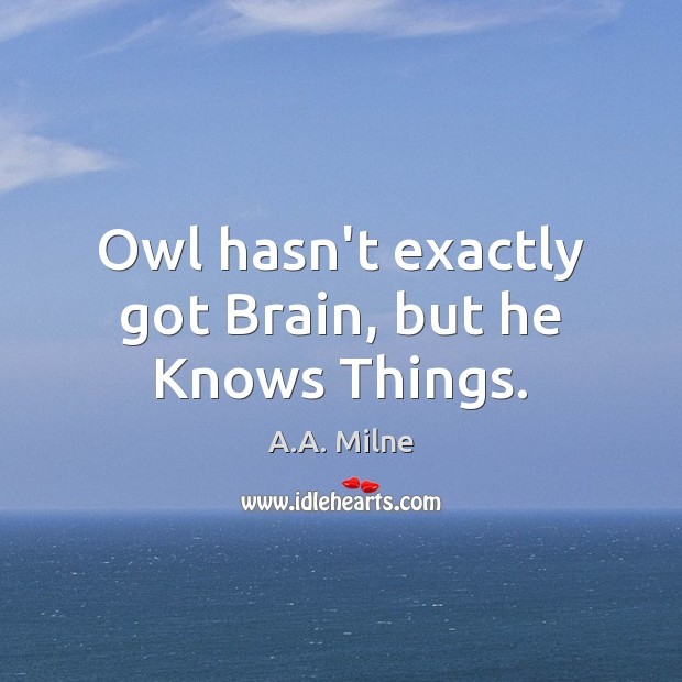 Owl hasn't exactly got Brain, but he Knows Things. Image