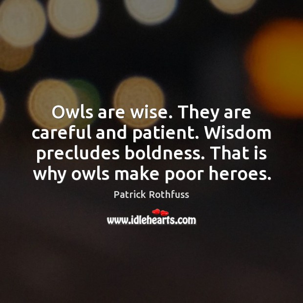 Owls are wise. They are careful and patient. Wisdom precludes boldness. That Boldness Quotes Image