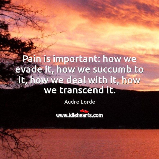 Pain is important: how we evade it, how we succumb to it, Audre Lorde Picture Quote