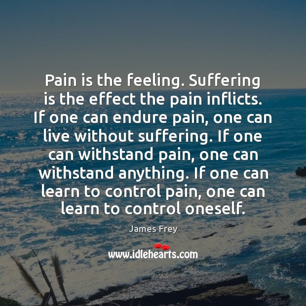 Pain is the feeling. Suffering is the effect the pain inflicts. If James Frey Picture Quote