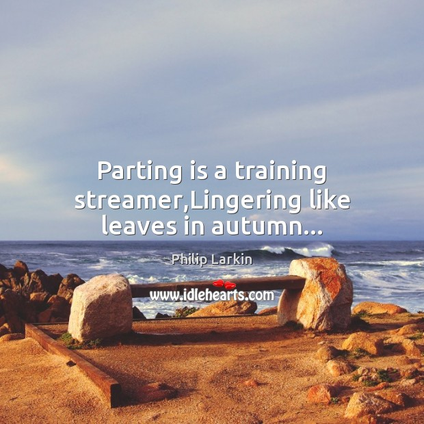 Parting is a training streamer,Lingering like leaves in autumn… Image