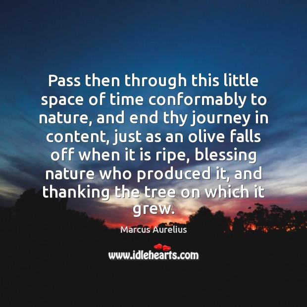 Pass then through this little space of time conformably to nature, and Image