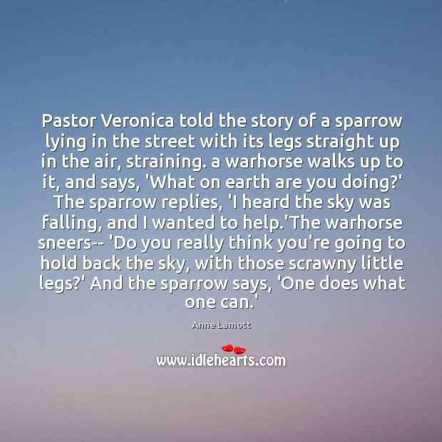 Pastor Veronica told the story of a sparrow lying in the street Image