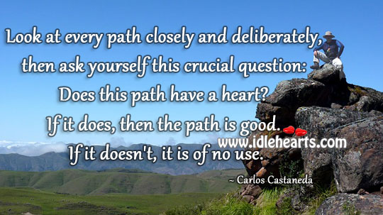 Look At Every Path Closely And Deliberately