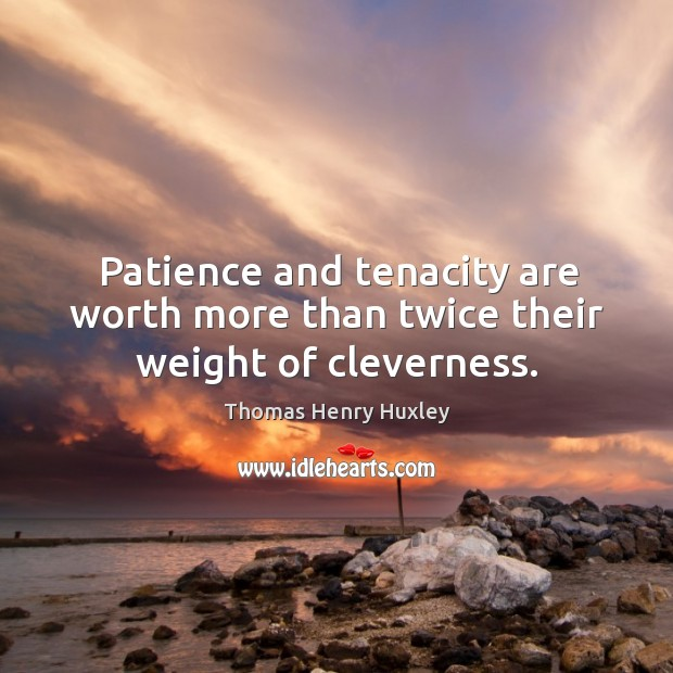 Patience and tenacity are worth more than twice their weight of cleverness. Image