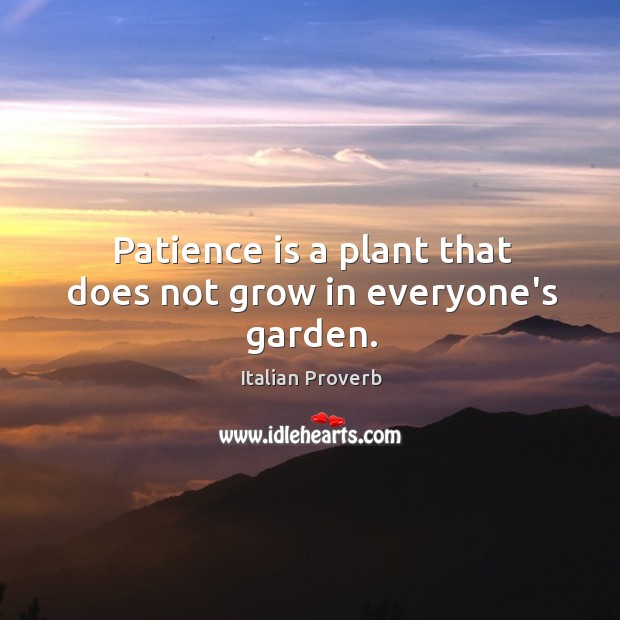 Image, Patience is a plant that does not grow in everyone's garden.