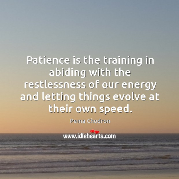 Image, Patience is the training in abiding with the restlessness of our energy