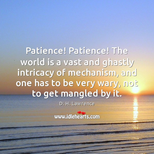 Patience! Patience! The world is a vast and ghastly intricacy of mechanism, D. H. Lawrence Picture Quote