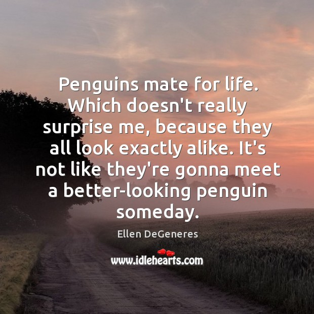 Image, Penguins mate for life. Which doesn't really surprise me, because they all