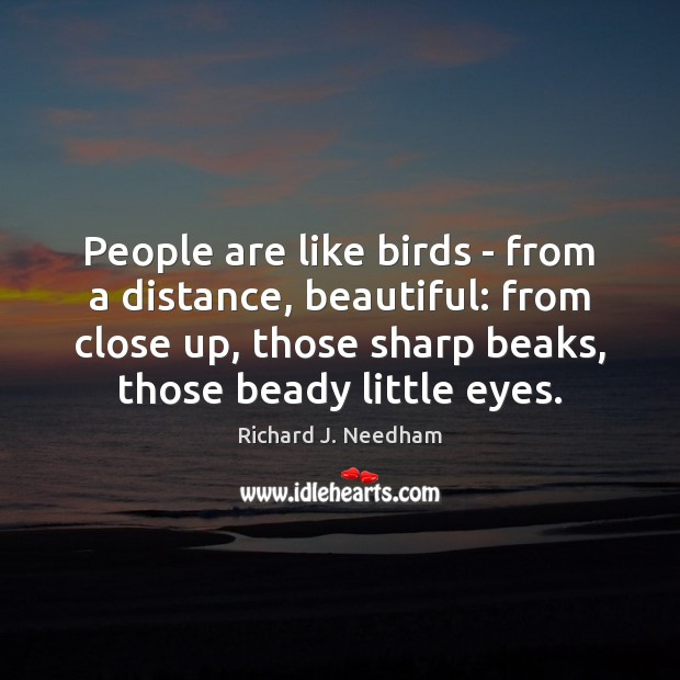 Image, People are like birds – from a distance, beautiful: from close up,