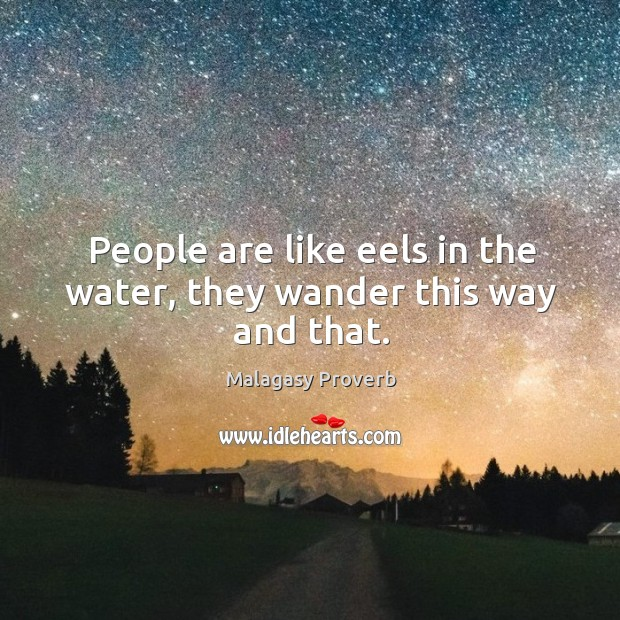People are like eels in the water, they wander this way and that. Malagasy Proverbs Image