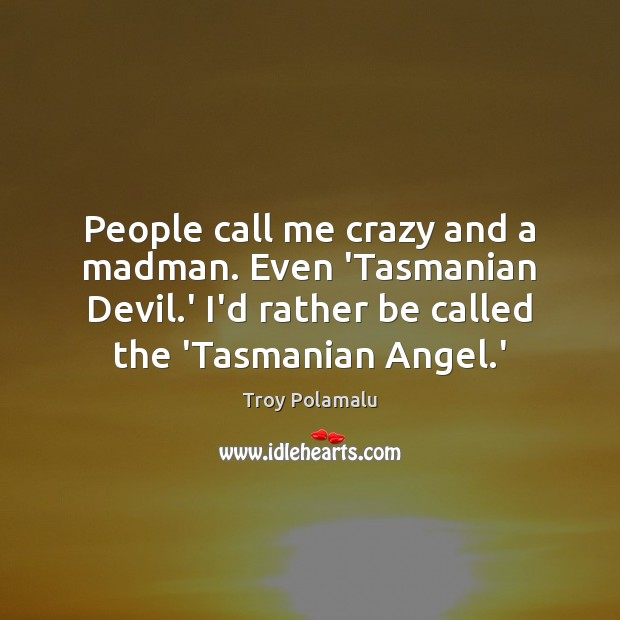 People call me crazy and a madman. Even 'Tasmanian Devil.' I'd Troy Polamalu Picture Quote
