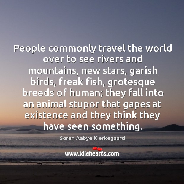 People commonly travel the world over to see rivers and mountains, new stars, garish birds Soren Aabye Kierkegaard Picture Quote