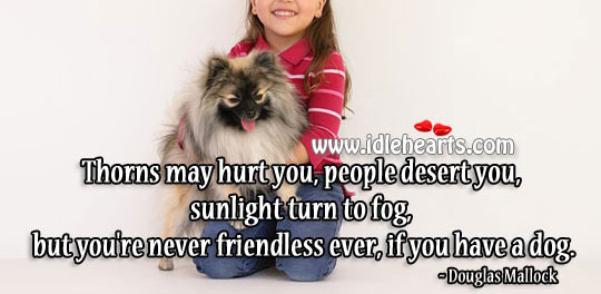 You're Never Friendless Ever, If You Have A Dog.