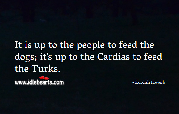 It is up to the people to feed the dogs. Kurdish Proverbs Image