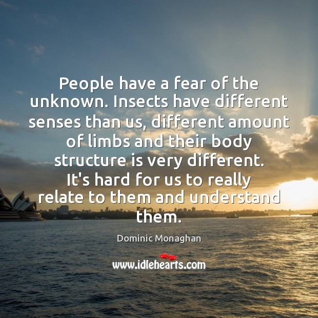 People have a fear of the unknown. Insects have different senses than Image