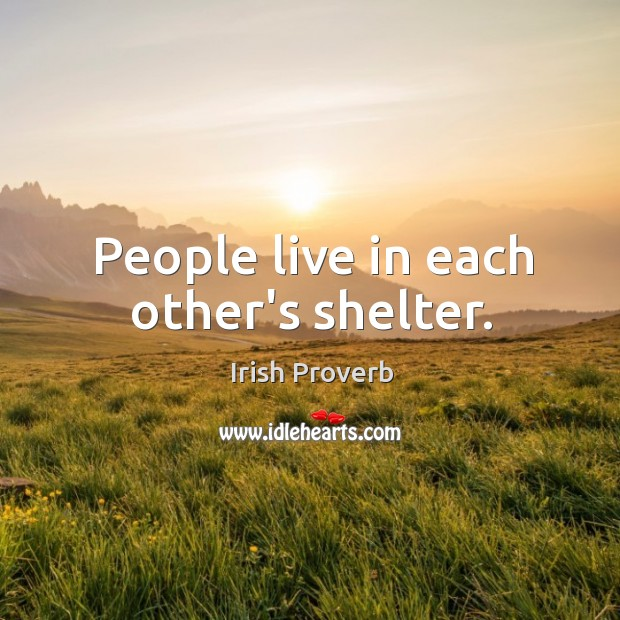 People live in each other's shelter. Image