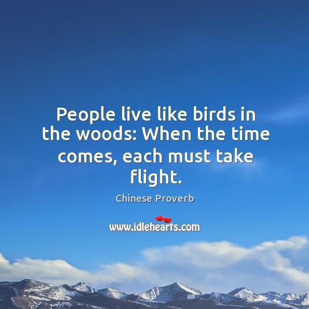 People live like birds in the woods: when the time comes, each must take flight. Chinese Proverbs Image