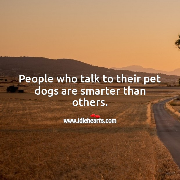 People who talk to their pet dogs are smarter than others. Pet Quotes Image
