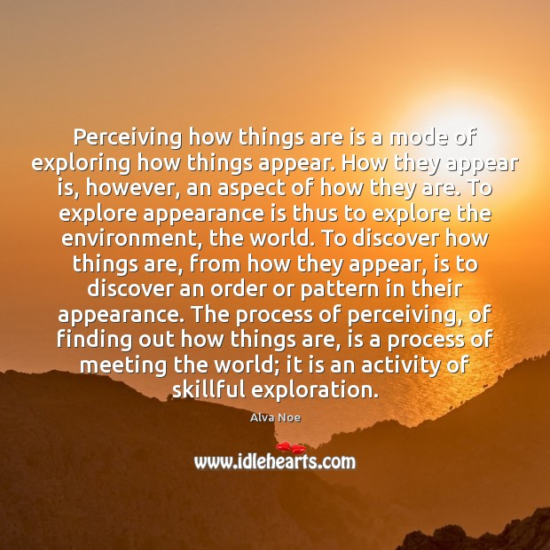 Image, Perceiving how things are is a mode of exploring how things appear.