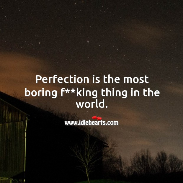 Perfection is the most boring f**king thing in the world. Image