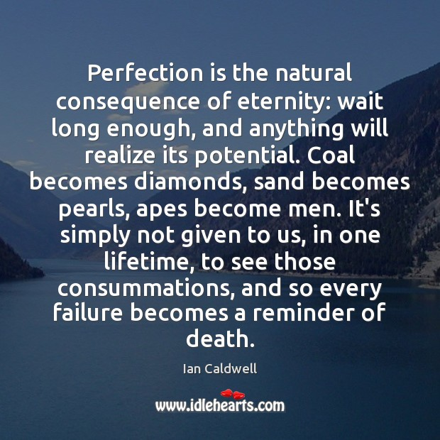 Perfection is the natural consequence of eternity: wait long enough, and anything Perfection Quotes Image