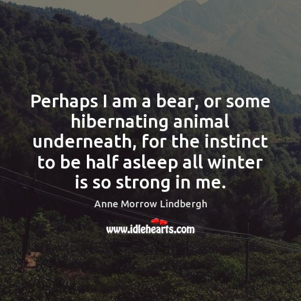 Perhaps I am a bear, or some hibernating animal underneath, for the Winter Quotes Image