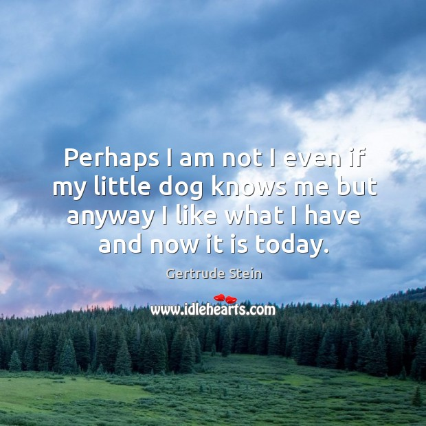 Perhaps I am not I even if my little dog knows me Image