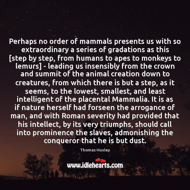 Perhaps no order of mammals presents us with so extraordinary a series Image