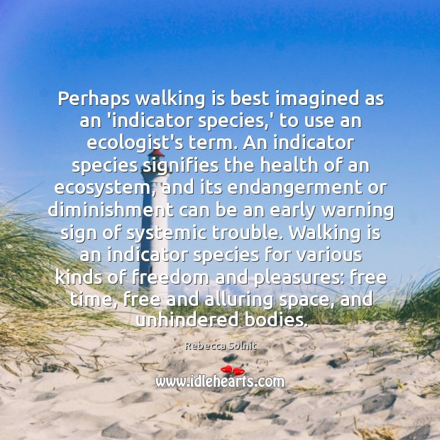 Image, Perhaps walking is best imagined as an 'indicator species,' to use