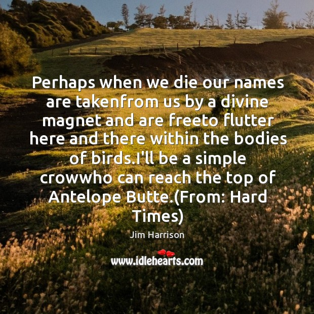 Perhaps when we die our names are takenfrom us by a divine Jim Harrison Picture Quote