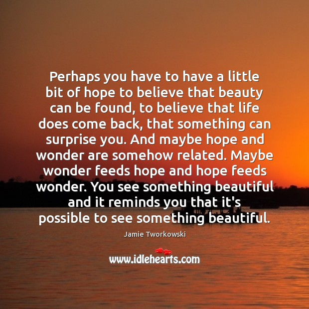 Perhaps you have to have a little bit of hope to believe Image