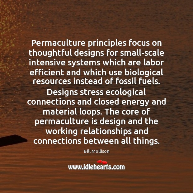 Permaculture principles focus on thoughtful designs for small-scale intensive systems which are Bill Mollison Picture Quote