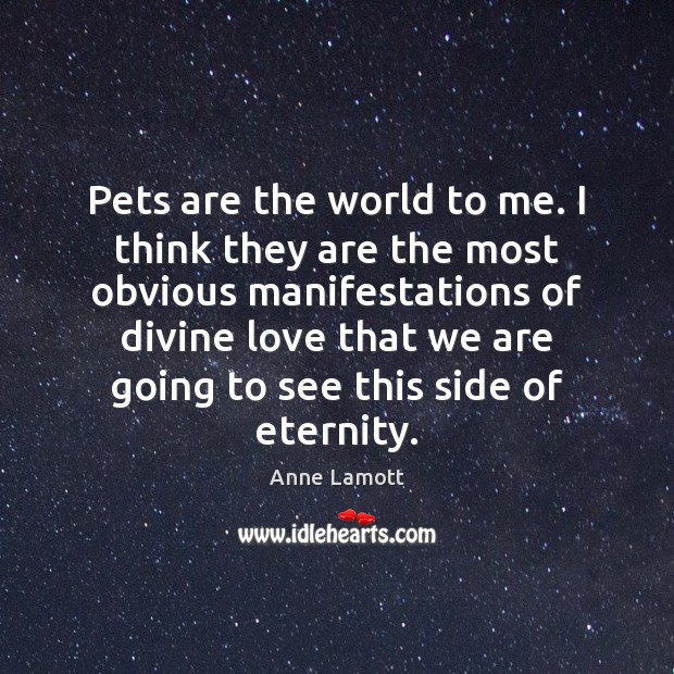 Pets are the world to me. I think they are the most Image