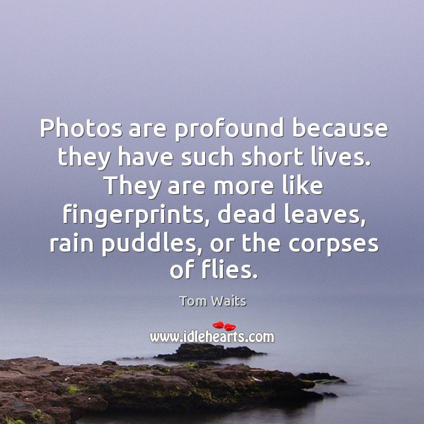 Photos are profound because they have such short lives. They are more Image